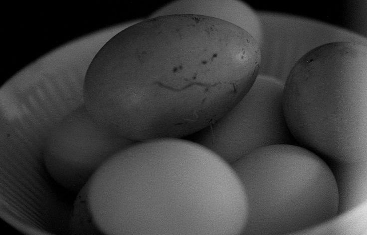 https://flic.kr/p/M4jiT7 | A bowl of eggs sits on a farmer's sideboard…