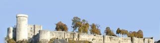 Chateau de Falaise en Normandie .... à visiter pendant votre séjour au Domaine du Martinaa ...  Kiss from Normandy ... Bises du Martinaa... Valérie ... 02 31 32 24 80 ou  www.martinaa.fr