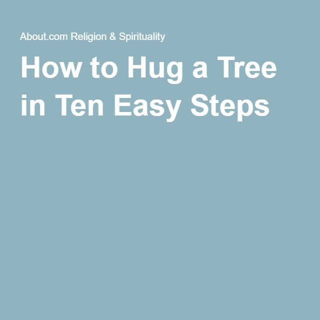 How to Hug a Tree in Ten Easy Steps