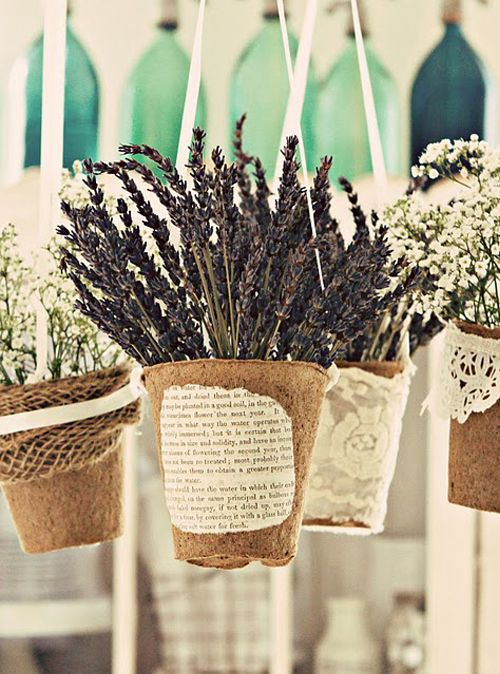 For the Herb Shop: display dried herb flowers in large peat pots!