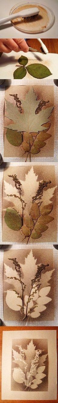 Nodig: -wit tekenpapier -verschillende soorten bladeren -bruine verf (niet te dik) -oude tandenborstel Leg een blad op je papier. P...