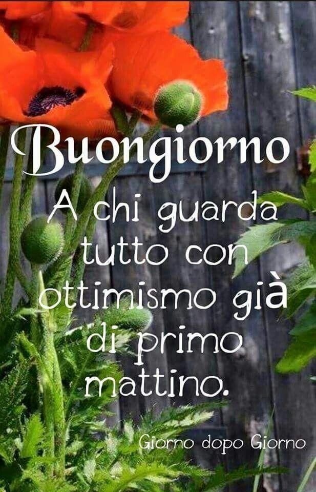 767 best images about buongiorno on pinterest tes for Buongiorno o buon giorno immagini