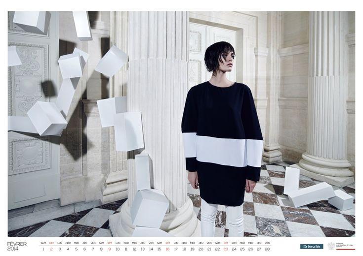 Patrycja Gardygajlo Stars in 2014 Polish Embassy in Paris Calendar