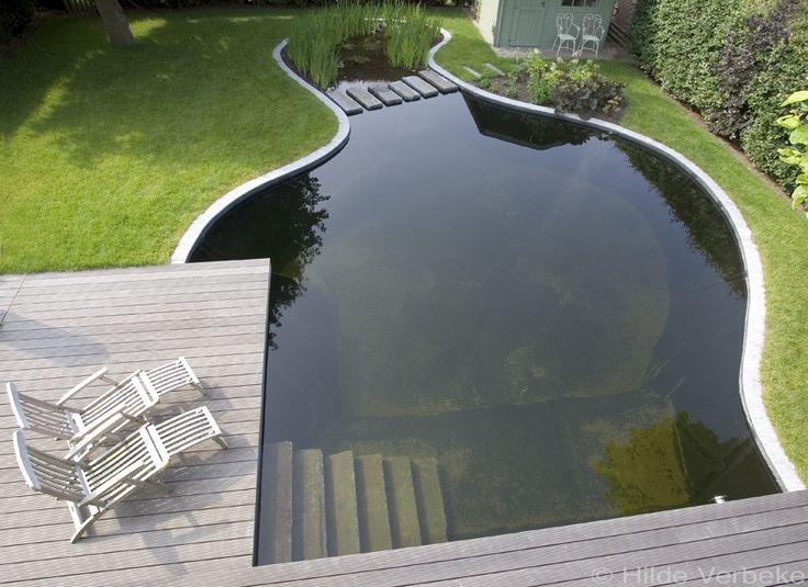zwemvijver aanleggen in tuin, losse vorm | De Mooiste Zwembaden