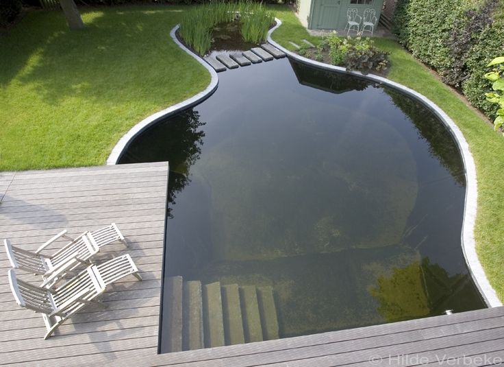 swimming pools, natural pools, landscape design, landscape architecture