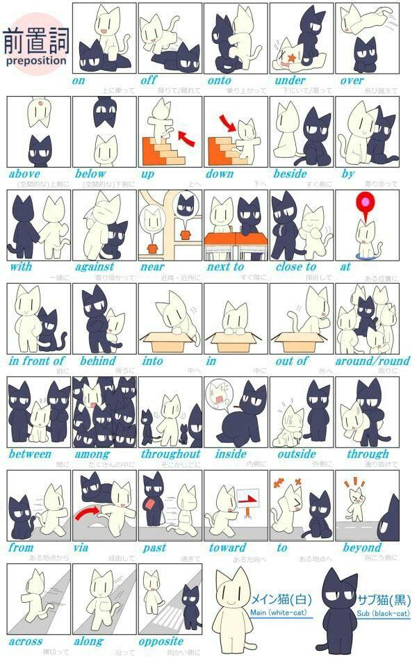 猫のイラストで覚える英語の前置詞一覧