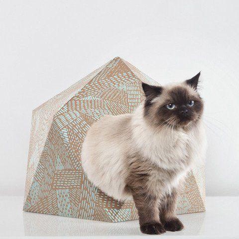 Catcube Mint