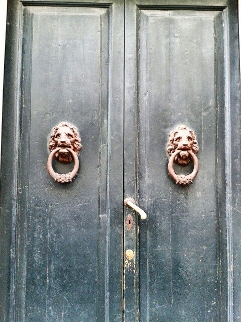 old door with lion