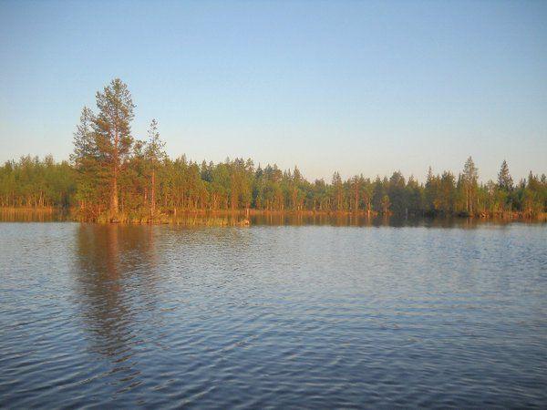 Вологодская область. Павшинское озеро.