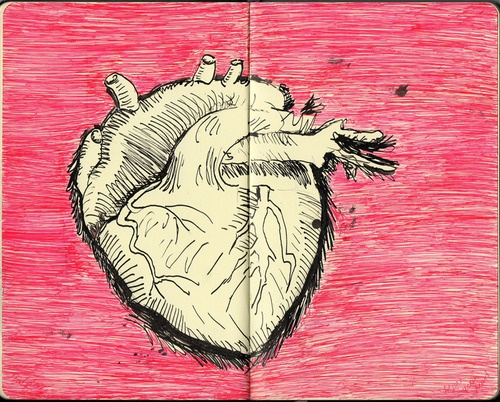 Follow your heart by Kaja Zalokar (moleskine)