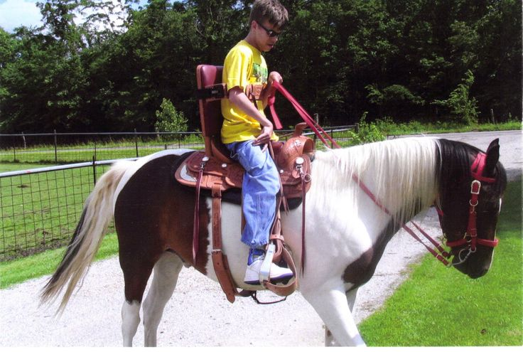 Horse Saddles for Disabled Riders | Horses | Pinterest ...