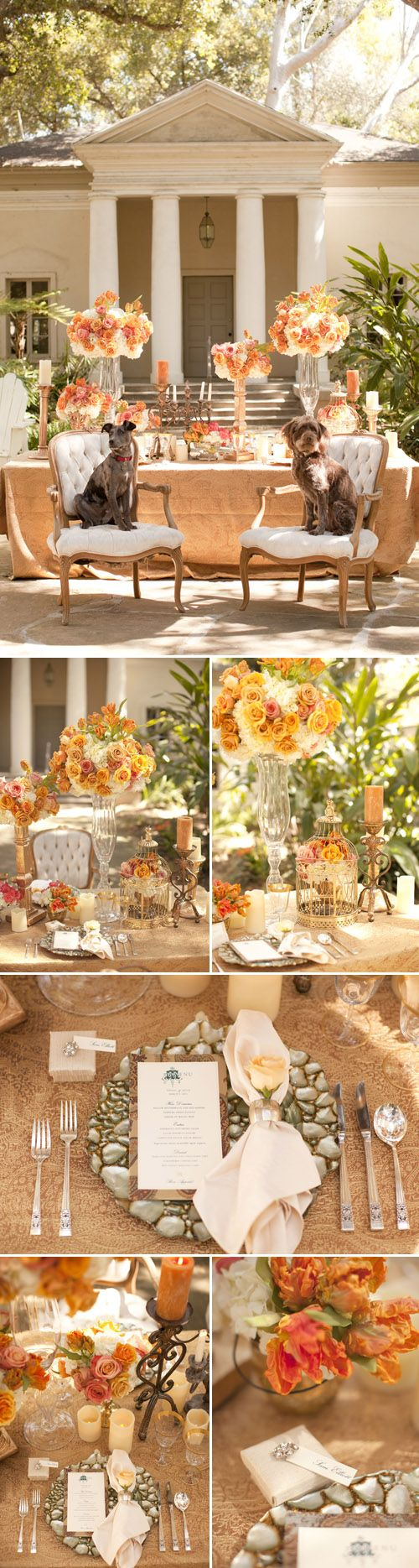 Coral flower arrangements brighten up this white wedding, photo by Allyson Magda