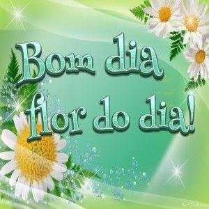 Bom dia flor do dia