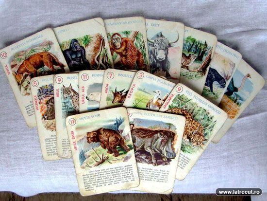 Animals card game for kids, joc de carti pentru copii