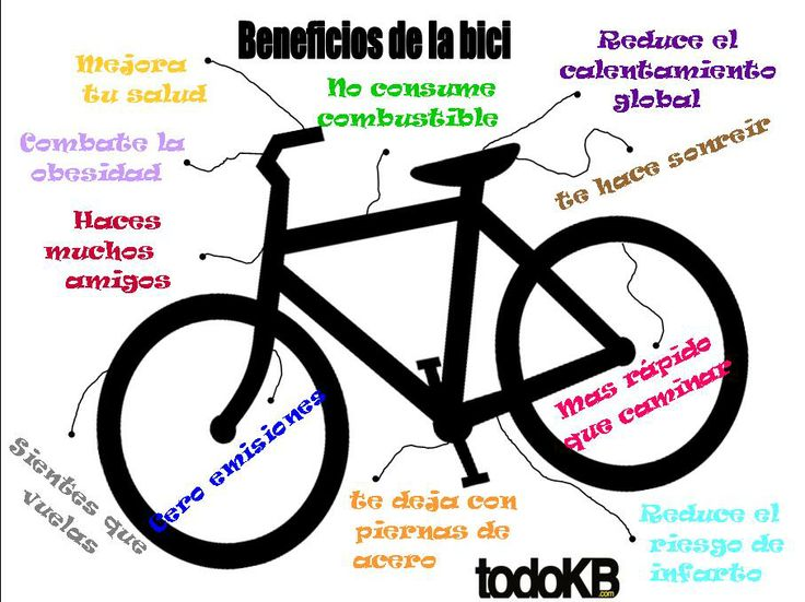 La Física De Las Bicicletas: Alquiler Trasteros Pamplona