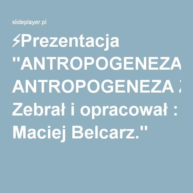 """⚡Prezentacja """"ANTROPOGENEZA ANTROPOGENEZA Zebrał i opracował : Maciej Belcarz."""""""