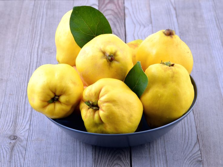 Ripe quince fruit. An easy how to use quince guide including delicious quince recipes