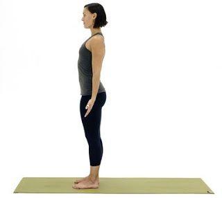 12 steps of surya namaskar  yoga poses for beginners