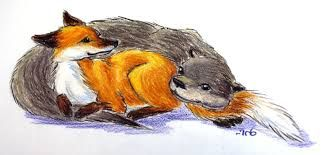 fox and otter tattoos - Google Search