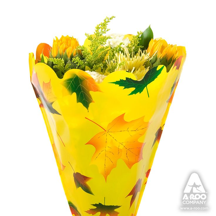 Bright, colorful Autumn leaves on a clear sleeve mingle and visually dance with the fresh
