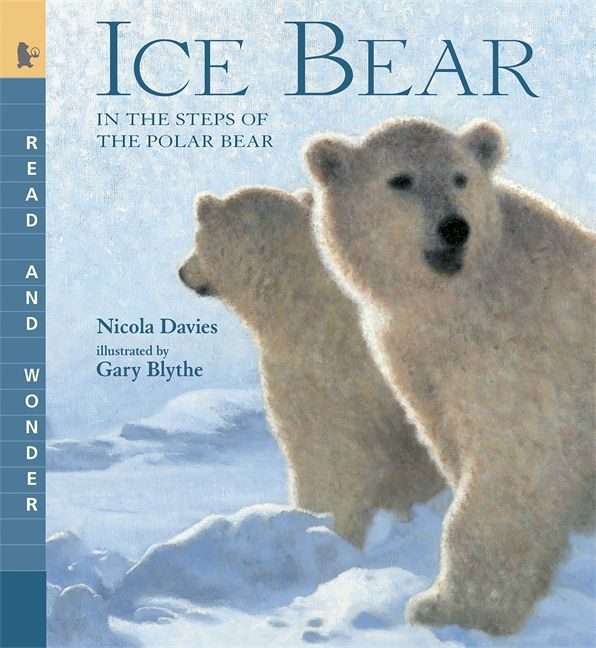 #commoncore Ice Bear, by Nicola Davies. Huge, magnificent, and solitary, a polar bear moves through the frozen Arctic. Powerful hunter, tireless swimmer, tender mother, gentle playmate -- she is superbly adapted for surviving, even thriving, in this harsh and icy climate. Written in poetic language interspersed with fascinating facts, Nicola Davies' breathtaking tale of this massive, stark white animal is brought to life in striking paintings by Gary Blythe. PB 9780763641498 / Ages 5-8 / GRL…