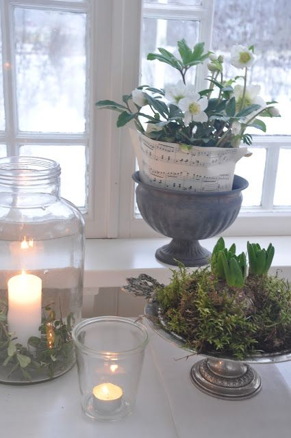Potted plants and white candles. White and green Christmas deco.