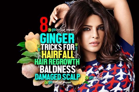 Ginger for hair care, how to use ginger for hair growth, how does ginger help in hair growth, ginger hair mask for hair growth, natural home remedies for baldness, natural home remedies for hair fall hair loss, natural home remedies for dandruff, natural home remedies for damaged scalp, ways to use ginger for healthy hair growth, ginger beauty benefits will give you longer hair, rub ginger on your scalp, does ginger really help to fight hair loss?, treating hair problems with ginger, ginger…