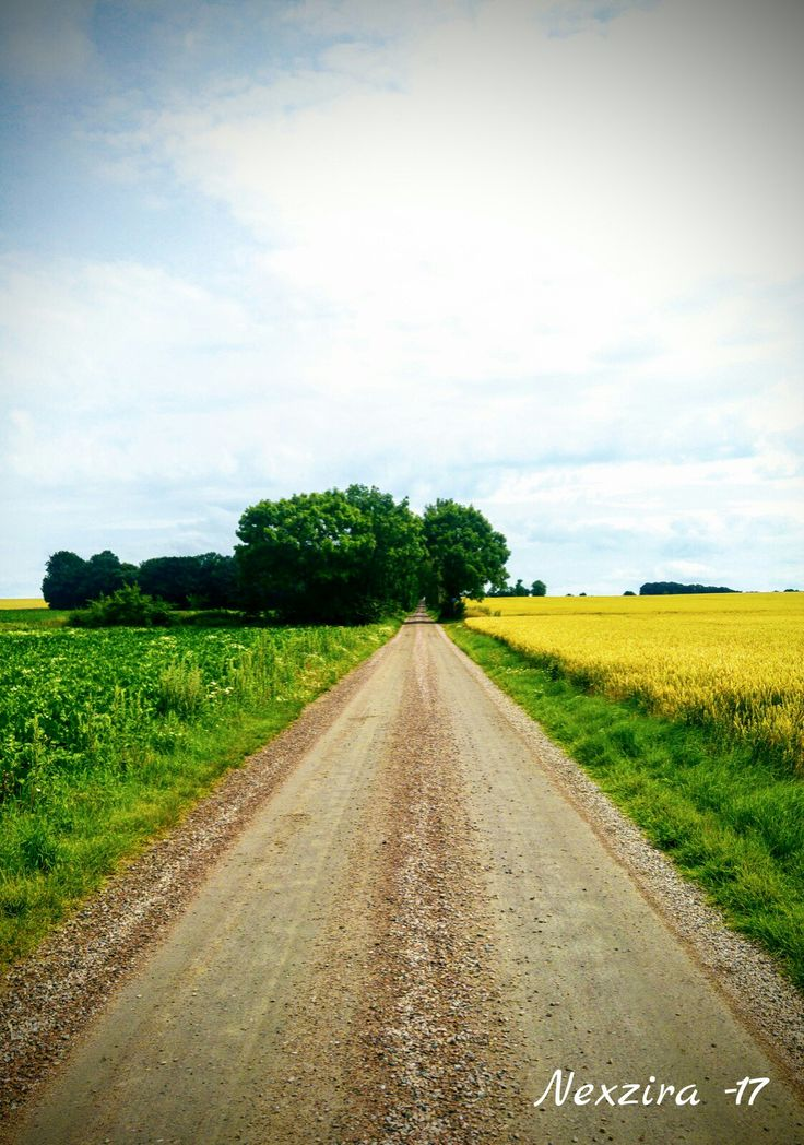 Where the road takes you