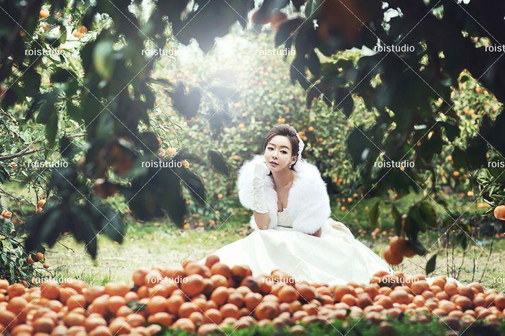 Jeju Island Korean Wedding Photography - Winter by Roi Studio on OneThreeOneFour 18