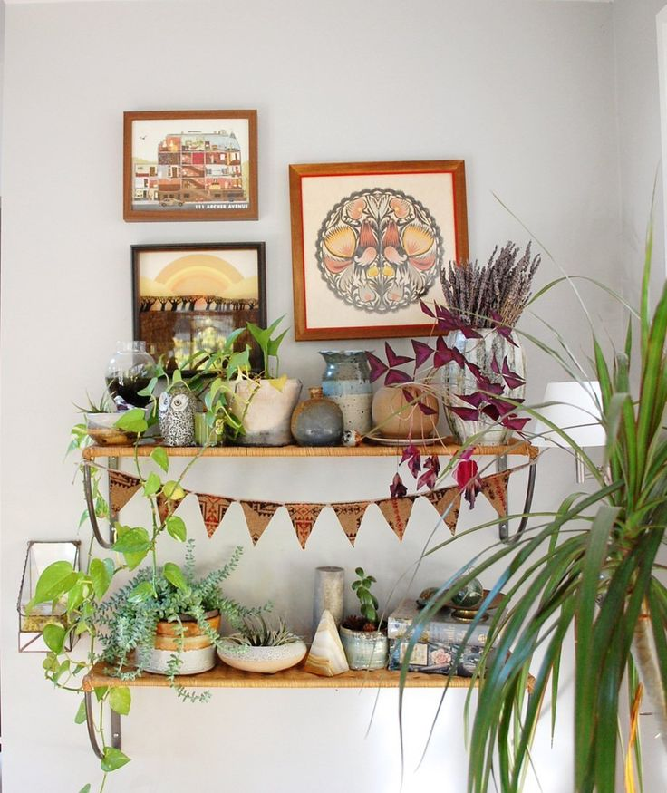 Decorating Dilemma House Plants: House Tours, Plants And Apartment Therapy On Pinterest