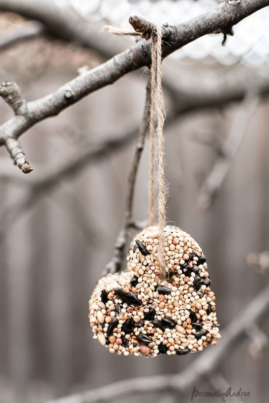 How to make birdseed ornaments as a fun winter craft with your kids | makes a practical handmade gift | http://personallyandrea.com