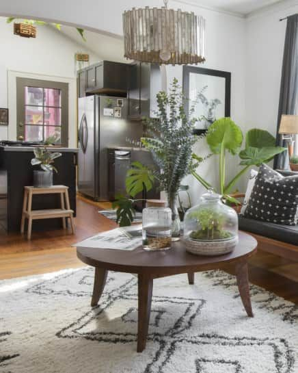 Palms Apt Charleston: The Difference Between Parlor Palm, Areca Palm, And All