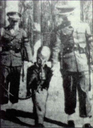 Germans captured a being?! It appears to have a breathing tube, which the man on the left must be holding , (along with a portable tank containing something other than the air we breath.