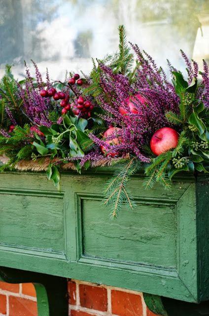 LILJOR OCH TULPANER: Höst i balkonglådan  beautiful holiday planter