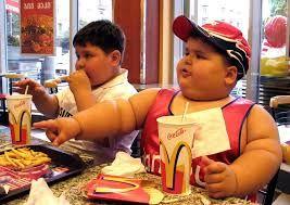 Afbeeldingsresultaat voor fat americans