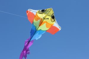Parks for flying Kites!