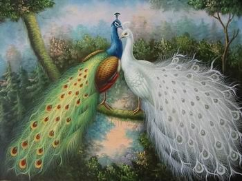 12X16 inch Animal Canvas Art Repro Perfect Peacock Couple: I love peacocks, don't know why. Might be becasue it's the guys that are pretty. I love this picture. I've seen regular peacock pictures and albino peacock pictures but not one together. Beautiful.