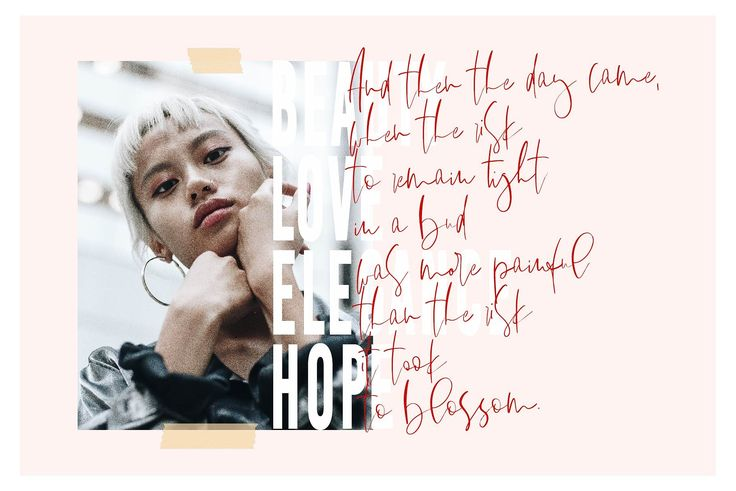 Figueira | A Stylish Font Duo by Sinikka Li on @creativemarket