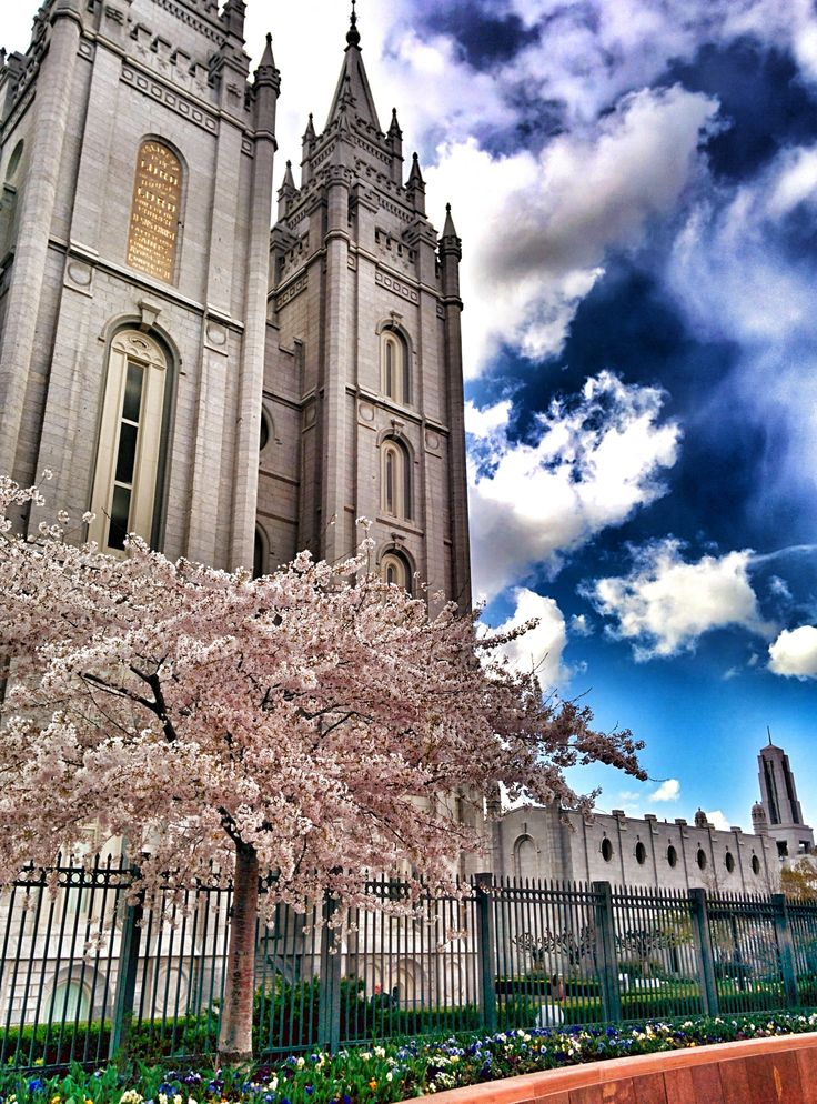 20 Best Temple Square Images On Pinterest  Buddhist. Stock Market Today Live Stock. Free Salary Paycheck Calculator. Pmp Certification Chicago Water Damage Carpet. Advertising Sites For Free Tccc Mailing List. South Africa Safari Trip Dentist In Belton Mo. How Old To Get Medicare Insurance. Online Data Visualization San Marcos Plumbers. How A Water Heater Works Home Theater Gallery