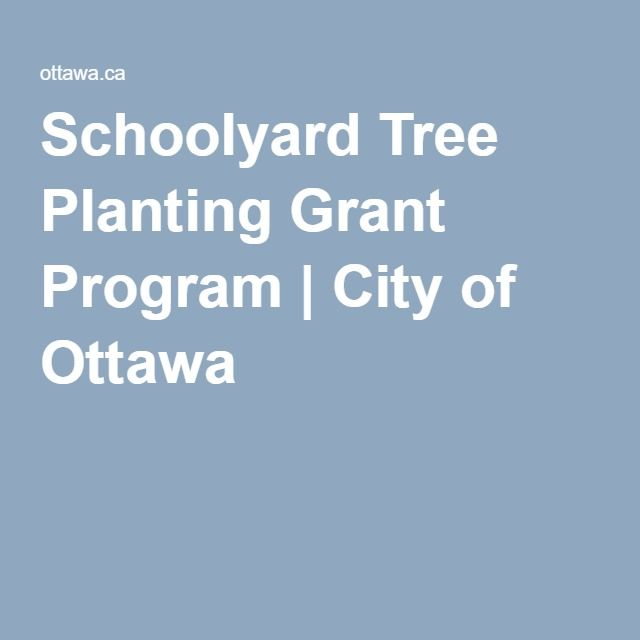 Schoolyard Tree Planting Grant Program   City of Ottawa