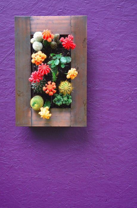 How to Build a Vertical Cactus Garden from Shawna Coronado - this idea  is so unique!