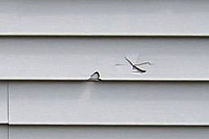 Repairing Damaged Vinyl Siding. Detailed tutorial on how to replace siding and how to find a match to your siding.