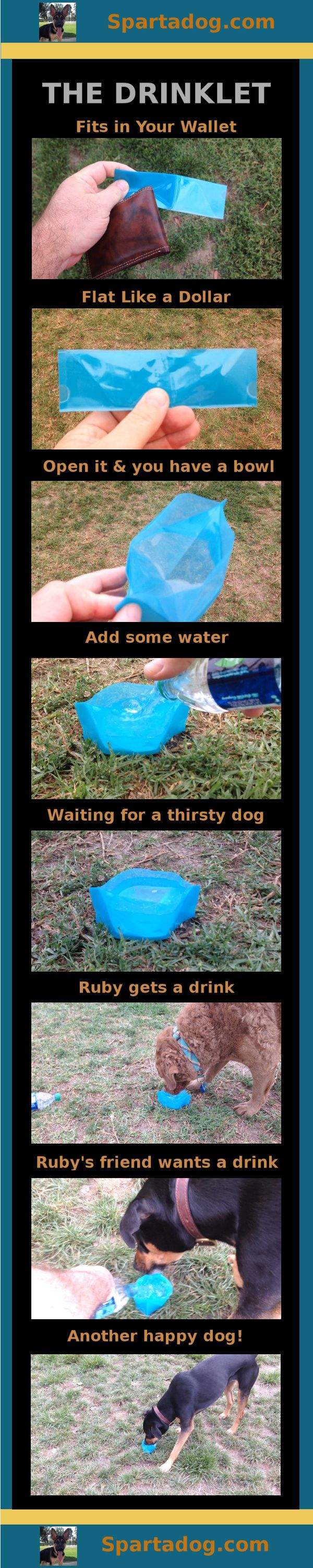 The Drinklet, a totally flat dog bowl - get yours at Spartadog.com #spartadog