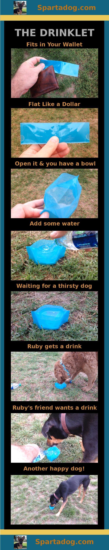 The Drinklet, a totally flat dog bowl - get yours at Spartadog.com #ohlandtvet #chs #chspets