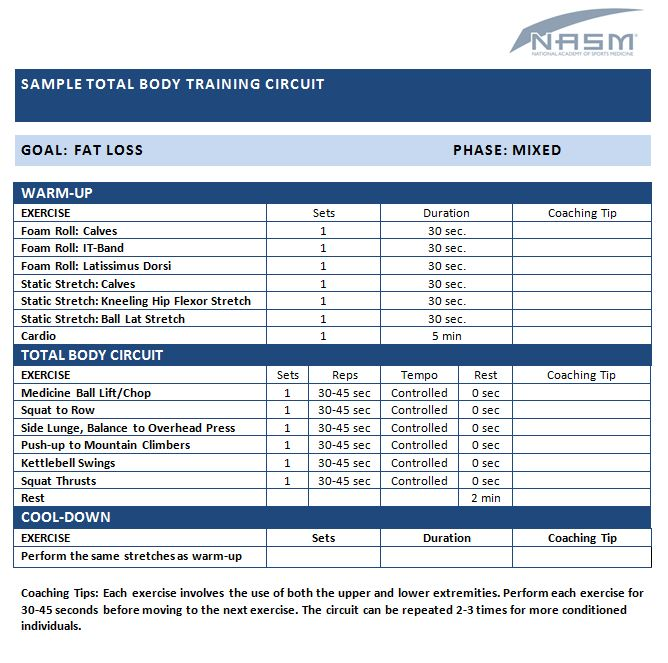 15 best NASM Sample Exercise Programs images on Pinterest Work - workout program sheet