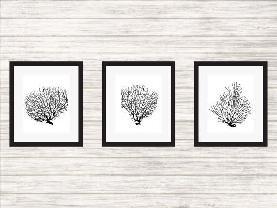 Set of 3 Black Sea Fans Sealife  Wall Art Poster by paper4download