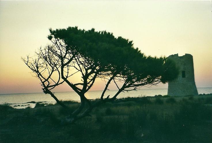 home Sardegna  by Gianluca Carta