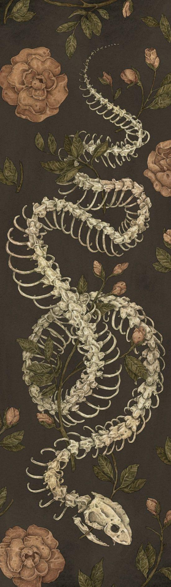"""artagainstsociety: """"  Snake Skeleton by Jessica Roux """""""