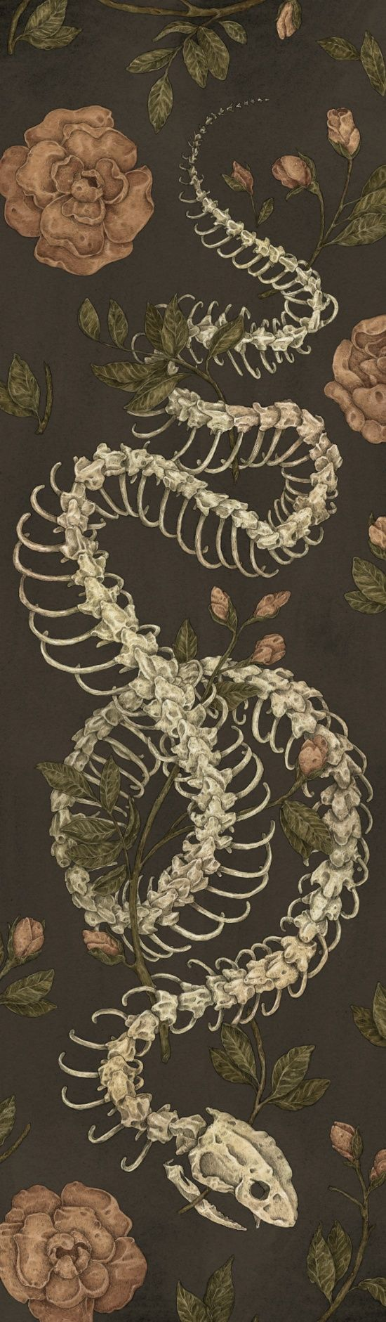 Snake Skeleton Art Print by Jessica Roux