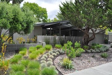 I like the curved features and rock mulch. Front Yard No Grass Design Design Ideas, Pictures, Remodel, and Decor - page 16